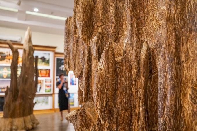 Trầm hương là phần gỗ từ thân cây dó bầu. Khi cây này bị tổn thương sẽ tiết ra nhựa, trở thành một loại gỗ quý thơm tạo ra trầm hương. Những khối trầm tự nhiên phải mất thời gian lâu để hình thành nên rất quý, giá trị hơn với loại nuôi cấy.