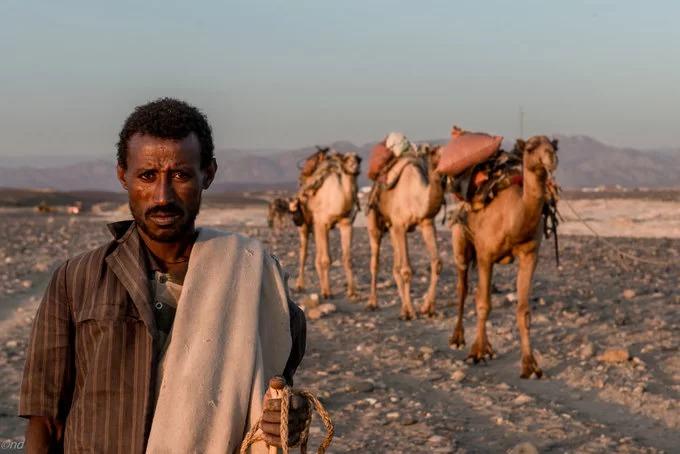 Thích nghi trong điều kiện sống khắc nghiệt của Danakil, cơ thể người Afar cần ít nước và thức ăn hơn so với người bình thường. Trong hành trình di chuyển, họ chỉ cần một ổ bánh mì và nước. Ảnh: Lens Magazine.