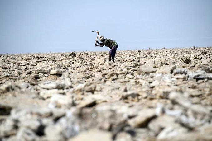 Với khí hậu nóng, khô và điều kiện khắc nghiệt, rất ít loài động thực vật có thể sống ở Danakil. Tuy nhiên, người Afar đã định cư ở đây hàng trăm năm qua trong làng Hamadela. Ảnh: The Atlantic.