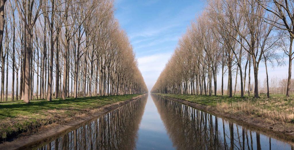 Damme: Nếu đang vi vu châu Âu và có ý định tìm điểm tránh nóng, bạn có thể ghé thị trấn Damme nằm ở ngoại ô thành phố Bruges. Trong tiết trời mát mẻ với nhiệt độ trung bình ở mức 21 độ C, du khách sẽ được tận hưởng không gian trong lành, thoải mái dạo quanh thị trấn cảng xinh đẹp nằm bên bờ Damse Vaart, con kênh rợp bóng cây thơ mộng. Ảnh: VisitFlanders.