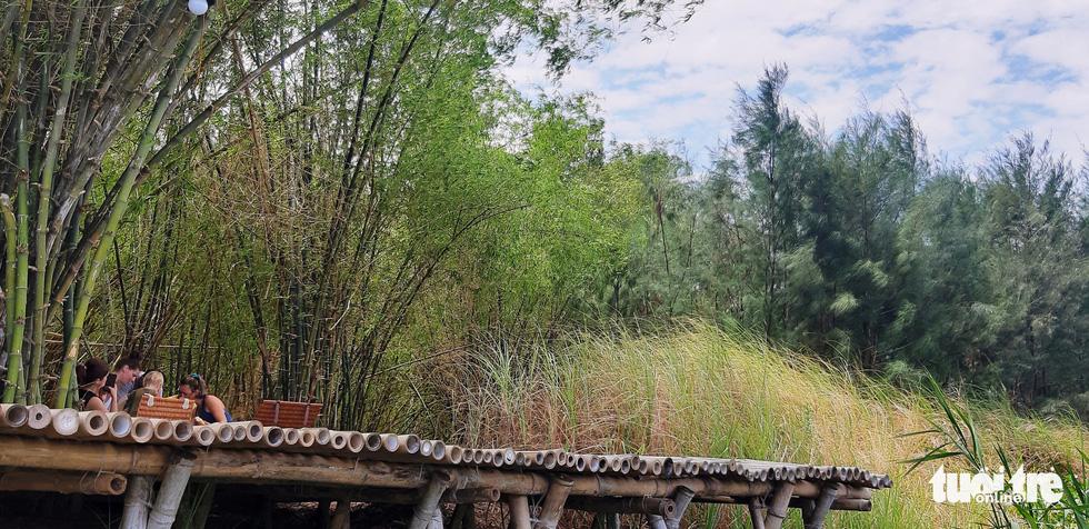 Thư giãn dưới rặng tre xanh - Ảnh: LÊ TRUNG