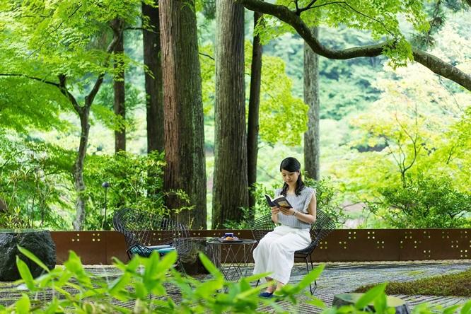 Khung cảnh xanh tươi và yên bình