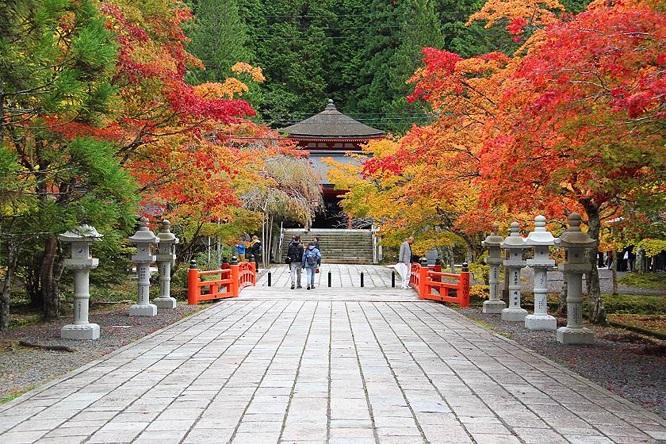 Là nơi sinh của Phật giáo Shingon, đây là ngôi nhà của hơn 100 ngôi chùa