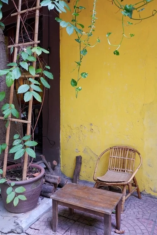 Chủ quán kê vài bộ bàn ghế gỗ dọc theo lối đi của khu tập thể, bên dưới những giàn cây dây leo xanh rì. Thông thường khách đến tiệm vào buổi sáng hay chiều muộn thường chọn vị trí này để tận hưởng không khí ngoài trời.