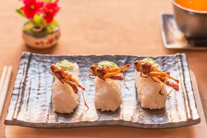 Sushi côn trùng: Sushi là món ăn phổ biến ở đất nước mặt trời mọc. Ngoài cá và hải sản, món ăn này còn được biến tấu bằng cách sử dụng côn trùng như nhện, ong, sâu, ấu trùng. Nhà văn Shoichi Uchiyama từng đề cập trong cuốn sách nấu ăn thực đơn là các món làm từ côn trùng. Ông cho rằng sushi thịt nhện là ngon nhất vì chúng mềm và thơm. Cách chế biến tốt nhất là rim chúng trong chảo sau đó ăn kèm với cơm trắng như các món sushi truyền thống khác. Ảnh: CK Bangkok.