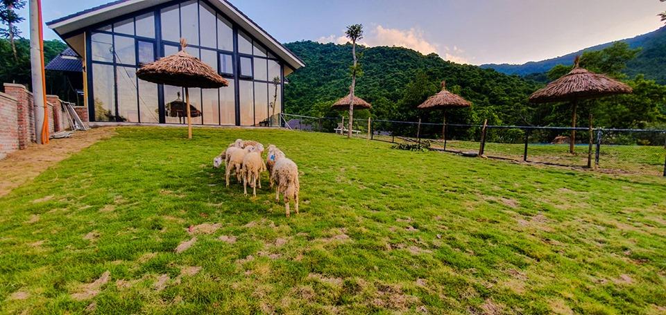 Bach-Ma-Village-Hue-ivivu-8