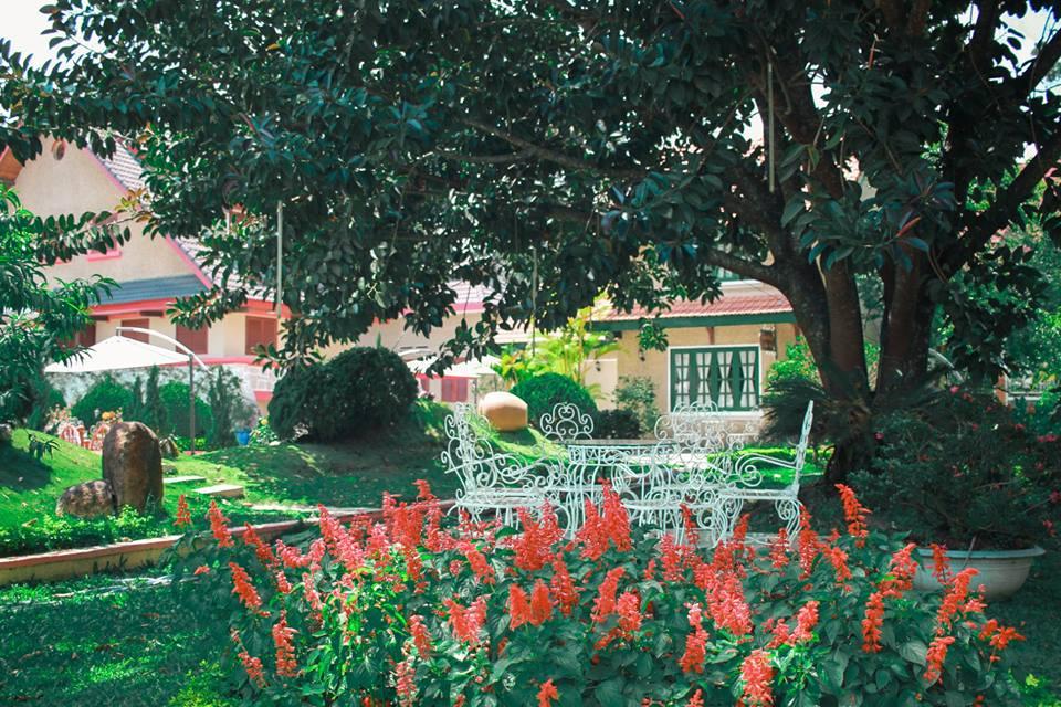 Monet-Garden-Da-Lat-ivivu-6