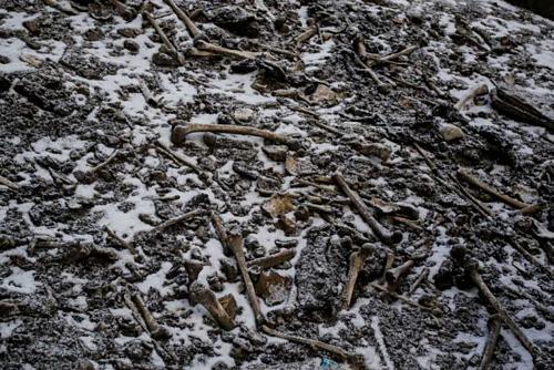 Độ cao của hồ Roopkund lý tưởng để bảo quản những bộ hài cốt. Trong nhiều năm qua, người leo núi tới hồ đã dịch chuyển nhiều bộ xương để trưng bày. Ảnh: Himadri Sinha Roy.