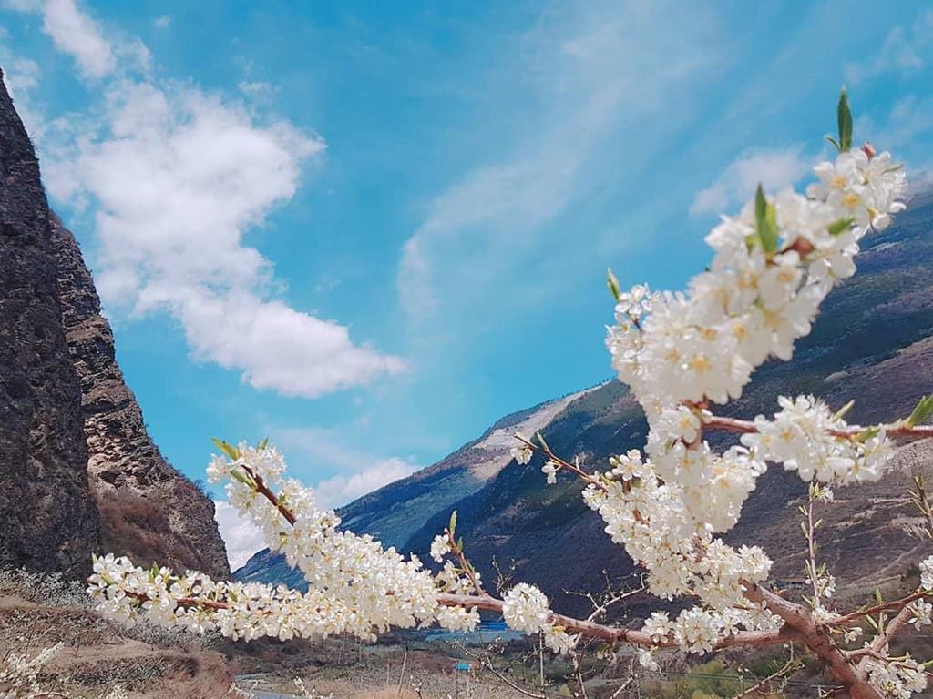 Mùa hè đến, tiểu Cửu Trại Câu sở hữu khí hậu mát mẻ và dễ chịu. Trên những ngọn núi, cây xanh và thường xuân mọc đan xen nhau. Đứng giữa núi rừng thanh tịnh, bạn sẽ cảm thấy bao nhiêu mệt mỏi, vất vả sau hành trình leo núi gian khổ như tan biến khi những cơn gió mát lạnh ùa đến. Ảnh: Superwebinie.