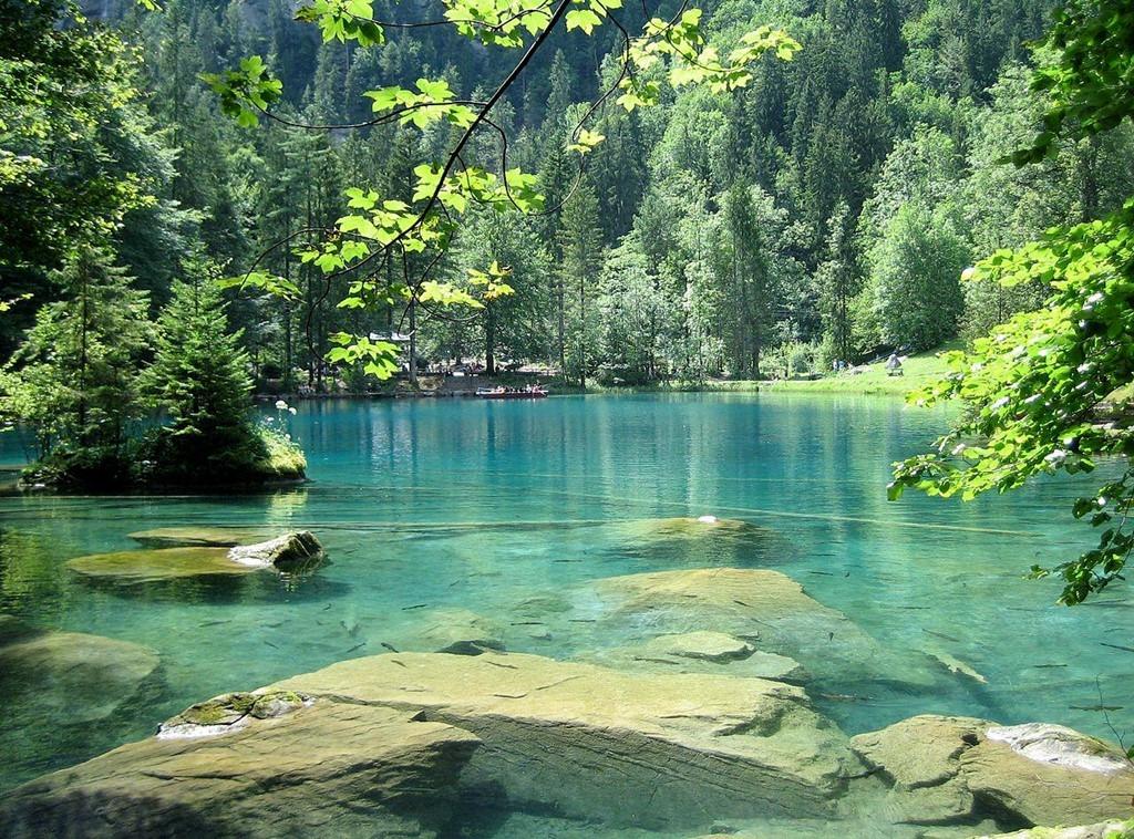 Trên thực tế, hồ được hình thành bởi một trận lở đất xảy ra từ hơn 15.000 năm trước. Được nuôi dưỡng bởi những con suối ngầm luôn giữ nước ở nhiệt độ mát mẻ, hồ Blausee trong vắt và trở thành môi trường lý tưởng cho các loại cá sinh sống, đặc biệt là cá hồi. Ảnh: Adrian Michael