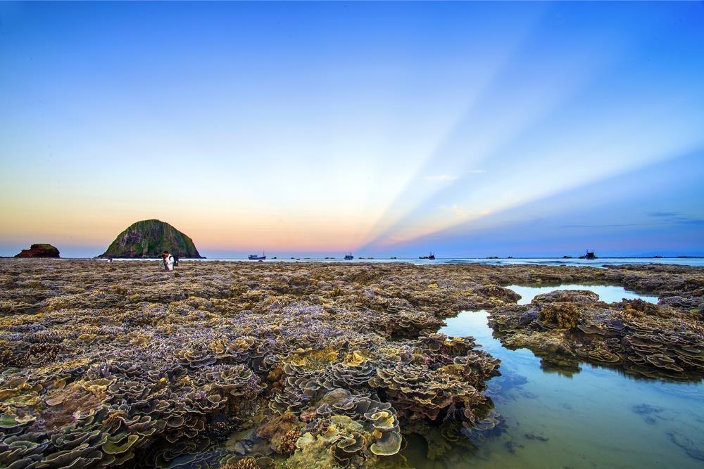 Theo người dân địa phương, thủy triều chỉ cạn vào buổi chiều những ngày đầu tháng, hoặc giữa tháng âm lịch. Mỗi đợt nước xuống thường kéo dài 2-3 ngày. Nếu bỏ lỡ, bạn phải đợi nửa tháng mới có thể ngắm san hô trên cạn. Bởi vậy, nếu có ý định du lịch hòn Yến, bạn phải canh thời gian để chiêm ngưỡng cảnh đẹp có 1-0-2 này. Ảnh: Tran Van Hong.