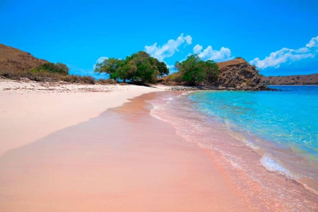 9. Bãi biển cát hồng đảo Komodo, Indonesia: Khi đã quá quen với những bãi biển cát trắng và vàng, bạn hãy tới đây để có thêm một trải nghiệm mới. Nằm trên hòn đảo nổi tiếng với loài rồng Komodo, bãi biển này cũng rất thu hút du khách. Màu hồng nơi đây là do sự hiện diện của san hô đỏ có trong thành phần của cát.