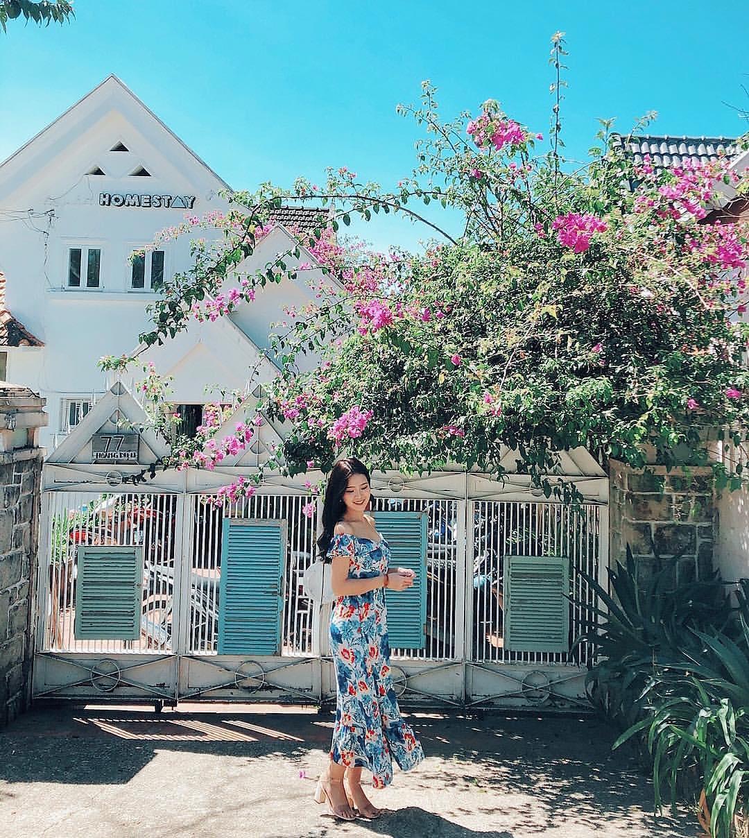 Lạc bước đến top 5 homestay Đà Lạt tràn ngập sắc hoa đẹp vạn người mê – iVIVU.com
