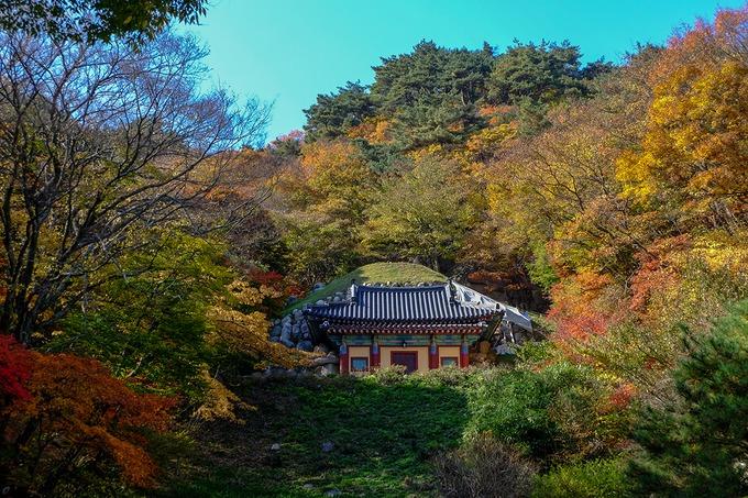 Hang Phật Seokguram  Seokguram được xem là một trong những ngôi đền Phật giáo trong hang động đẹp nhất thế giới, minh chứng tiêu biểu cho nghệ thuật kiến trúc vương triều Silla. Công trình được xây từ hàng nghìn phiến đá tự nhiên cách đây khoảng 1.200 năm. Công trình này được UNESCO công nhận Di sản văn hóa thế giới năm 1995. Ảnh: Isarint Sangmanee.