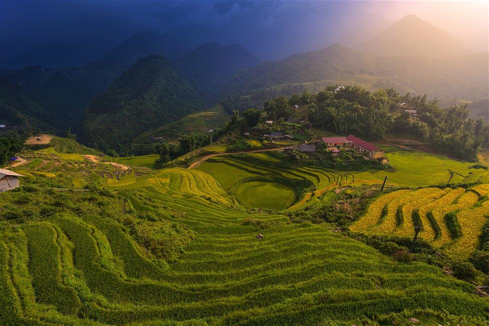Thưởng trà ở Sapa: Không khí mát lành, ruộng bậc thang, thác nước và núi Fansipan... Sapa có đủ trải nghiệm thú vị dành cho du khách. Đây cũng là nơi có hàng trăm trang trại trồng chè, sản xuất chè xanh, đen, ô long... Bạn có thể ở tại các homestay để có thể tiếp cận với văn hóa địa phương một cách gần gũi, chân thực nhất.