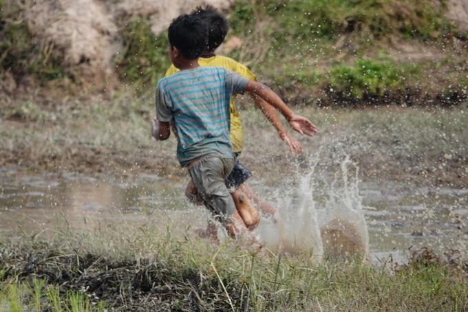 Bên ngoài cánh đồng, tiếng nô đùa của trẻ em tạo nên không khí rộn ràng một vùng quê.