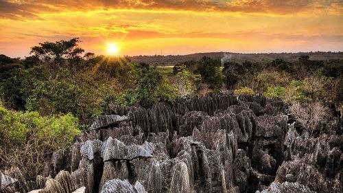 Tổ chức Công viên quốc gia được thành lập năm 1990 để bảo tồn tài nguyên thiên nhiên. Ảnh: Natural World Safari.