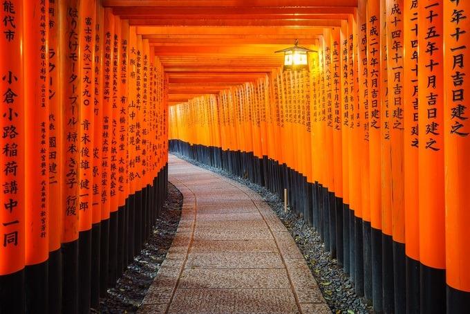 Điểm đặc biệt của nơi đây là lối đi lấp kín bởi 1.000 chiếc cổng Torii. Trên những cánh cổng đều đề tên người, tổ chức và công ty đã tặng chúng cho ngôi đền. Một chuyến đi bộ lên đỉnh núi và trở xuống hết khoảng 2 - 3 tiếng. Ảnh: Ikunl/ Envato Elements.