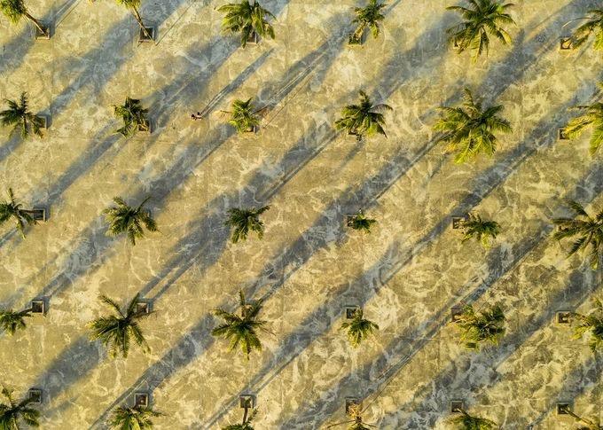 Những hàng dừa soi bóng trên bãi biển Non Nước, Đà Nẵng trong top ảnh đẹp ngày 17/6/2019. Bãi biển này trải dài 5 km như một vòng cung xanh nằm dọc chân núi Ngũ Hành Sơn.