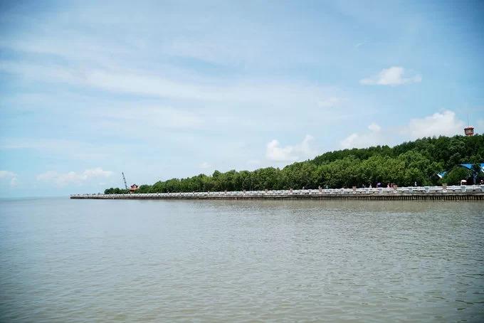 Năm 2009, vườn Quốc gia mũi Cà Mau được UNESCO công nhận là Khu dự trữ sinh quyển thế giới. Khu du lịch cũng cung cấp tour xuyên rừng bằng canô, giá một triệu đồng một chuyến cho tối đa 5 người. Vé vào cổng tham quan khu du lịch là 10.000 đồng một người, du khách có thể đi bộ hoặc ngồi xe điện tham quan với giá 10.000 đồng một lượt.