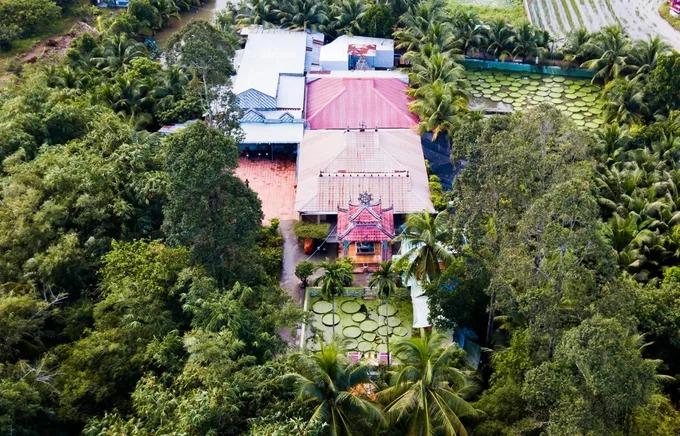 Chùa Lá Sen thường nằm trong chương tình tham quan của nhiều công ty lữ hành. Theo nhà chùa, vào dịp cuối tuần, lễ Tết có hàng trăm lượt khách tới tham quan.