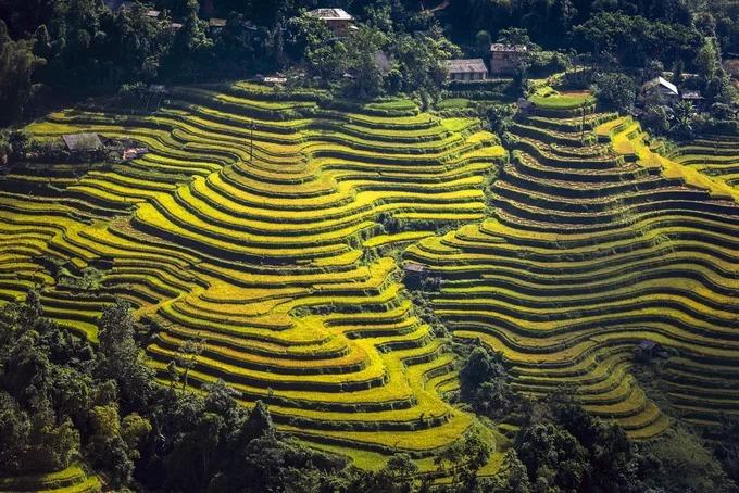 Ruộng bậc thang được công nhận Di tích quốc gia ở Hoàng Su Phì trải dài ở 11 xã gồm Bản Luốc, Bản Phùng, Sán Sả Hồ, Hồ Thầu, Nậm Ty, Thông Nguyên, Tả Sử Choóng, Bản Nhùng, Pố Lồ, Thàng Tín và Nậm Khòa (ảnh). Trong đó, Bản Luốc và Bản Phùng là nơi có những thửa ruộng bậc thang cao nhất Việt Nam.  Những thửa ruộng bậc thang ở đây ước tính có tuổi đời khoảng 300 năm.