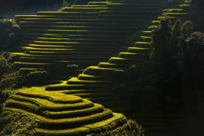 Vào mùa lúa chín, ruộng bậc thang Hoàng Su Phì nói chung, Nậm Khòa nói riêng tạo thuận lợi cho việc phát triển du lịch của địa phương, thu hút du khách, các nhiếp ảnh gia và mang lại thêm thu nhập cho người dân.
