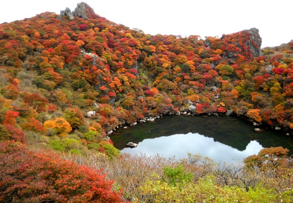 Núi A Lý Sơn (Alishan): A Lý Sơn là ngọn núi nổi tiếng bởi cảnh sắc tuyệt đẹp ở Đài Loan. Tới đây, bạn có thể tham gia nhiều hoạt động đáng nhớ như khám phá thác nước hùng vĩ, tham quan đồn điền trà trên cao, đi bộ dọc các tuyến đường mòn, xe lửa xuyên rừng. Mùa thu là thời điểm lý tưởng nhất để săn biển mây tại đây. Lúc này, những làn mây mỏng trắng xóa bao quanh núi tạo nên bức tranh đẹp tựa chốn bồng lai tiên cảnh. Ảnh: Livingnomads.