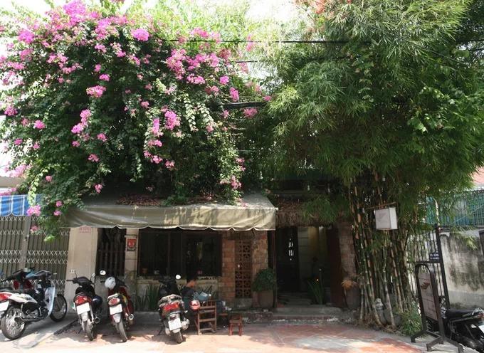 Quán cà phê nằm trên đường Nguyễn An Ninh, quận Bình Thạnh, không ấn tượng bởi mặt tiền hay biển hiệu như thường thấy, nhưng dễ nhận ra bởi một cây hoa giấy và bụi tre tươi tốt phủ bên trên. Cổng vào quán có kích thước khiêm tốn với mái lá và gạch mộc. Lối vào là những viên đá xếp ngẫu hứng với hai hàng cây xanh. Khoảng sân nhỏ luôn mát nhờ cây hoa giấy và bụi tre che phía trên.