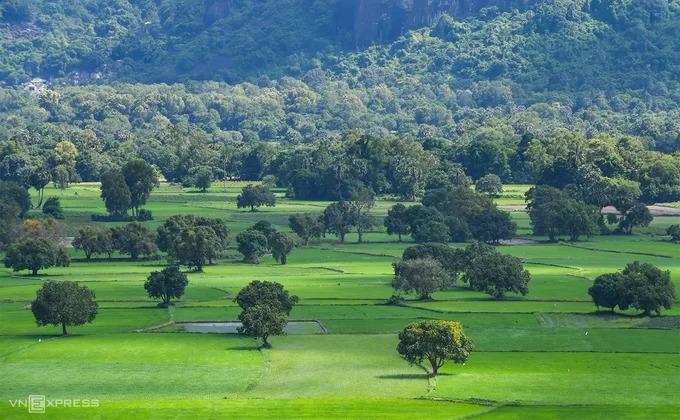 Cánh đồng Tà Pạ (huyện Tri Tôn) là một trong những điểm du lịch nổi tiếng nhất ở An Giang. Điểm đến này thu hút du khách quanh năm, cả mùa trồng lúa và khi thu hoạch. Tháng 10, người dân bắt đầu gieo mạ trên những thửa ruộng, mang tới khung cảnh xanh ngát.