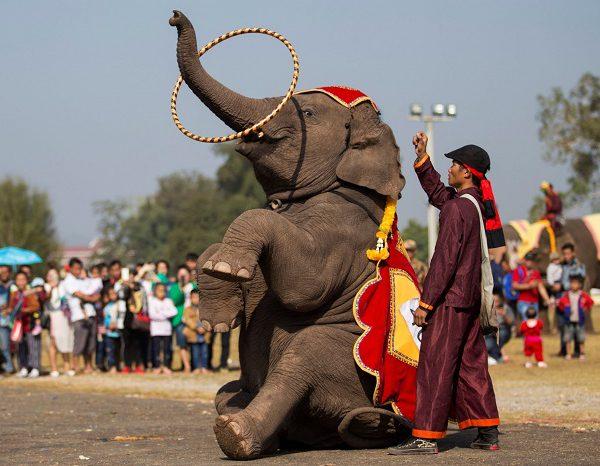 tour lao 4n3d - Pakse - 4.000 Đao - Wat Phou - Cao Nguyen Bolaven-ivivu -11