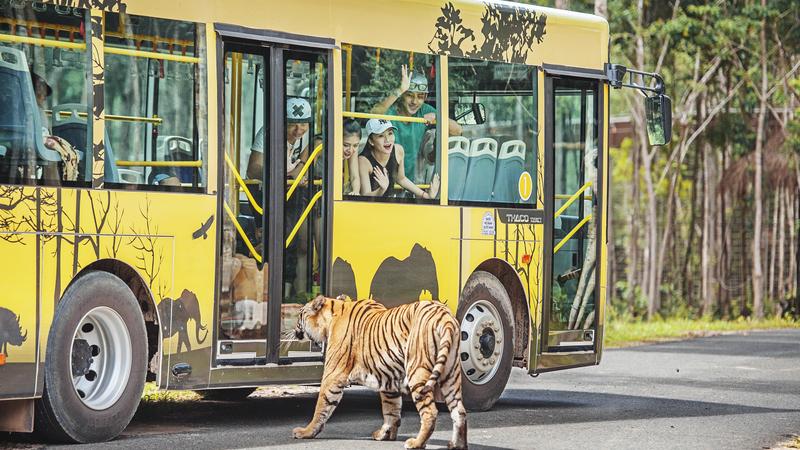 vinpearl-safari-phu-quoc-29--800x450