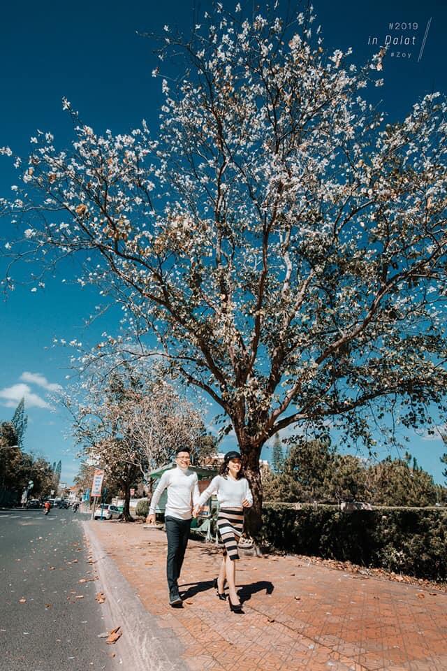 Ảnh: ZOY Wedding Studio Đà Lạt