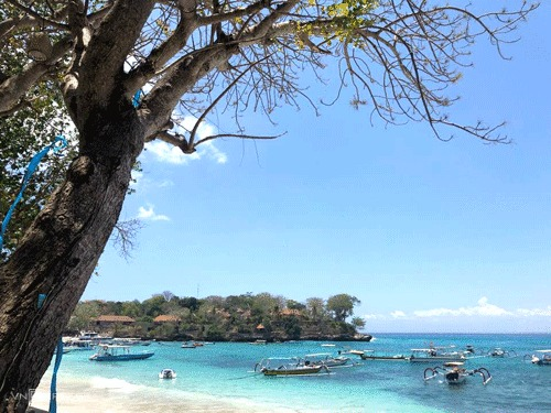 Bali là một trong những điểm hút khách hàng đầu tại châu Á.