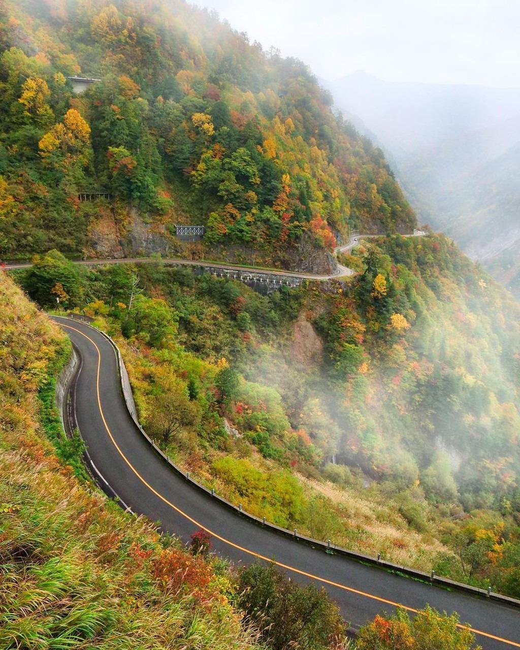 Nhờ thảm thực vật phong phú, mùa thu trên núi Hakusan hấp dẫn nhiều tín đồ yêu tự nhiên. Đoạn đường dẫn đến làng Shirakawa còn được gọi là con đường trắng, nằm trên vùng núi cao khoảng 600-1.500 m so với mực nước biển. Ảnh: ichirino, hiropon.