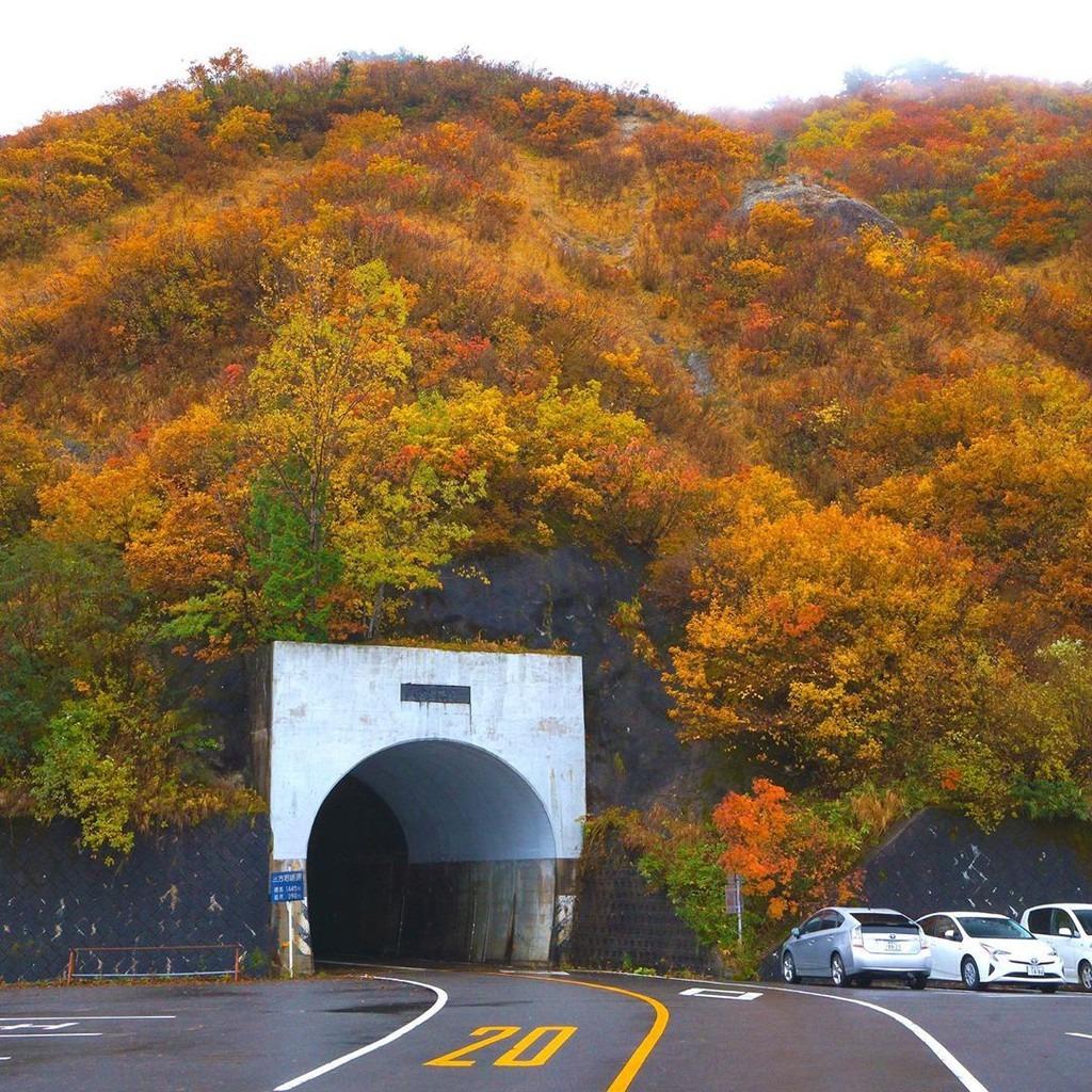 Chạy xe trên con đường trắng, du khách có thể quan sát được cảnh núi non trùng điệp của Hakusan với những thảm lá vàng, lá đỏ phủ kín. Đoạn đường Hakusan Shirakawa-go được đánh giá là hiểm trở. Vì điều kiện mùa đông khắc nghiệt, đoạn đường chỉ cho phép xe chạy từ tháng 6-11 hàng năm. Ảnh: nori_studio_2019.