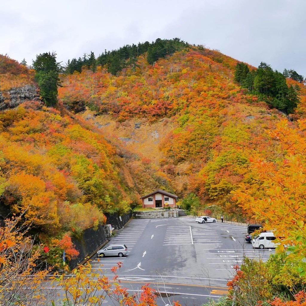 Trên đoạn đường trắng có trạm dừng chân tại đài quan sát Hakusan. Từ đây, du khách có thể ngắm nhìn toàn cảnh ngọn núi Hakusan hùng vĩ. Ảnh: Ichirino.