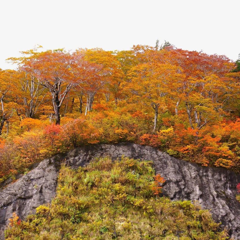 Một trong những hoạt động được nhiều du khách yêu thích khi đi qua Hakusan Shirakawa-go là tắm suối nóng. Núi lửa Hakusan đã dừng hoạt động nên có nhiều suối nước nóng, cho du khách không gian thư giãn ngọn núi thiêng yên bình. Ảnh: nori_studio_2019.