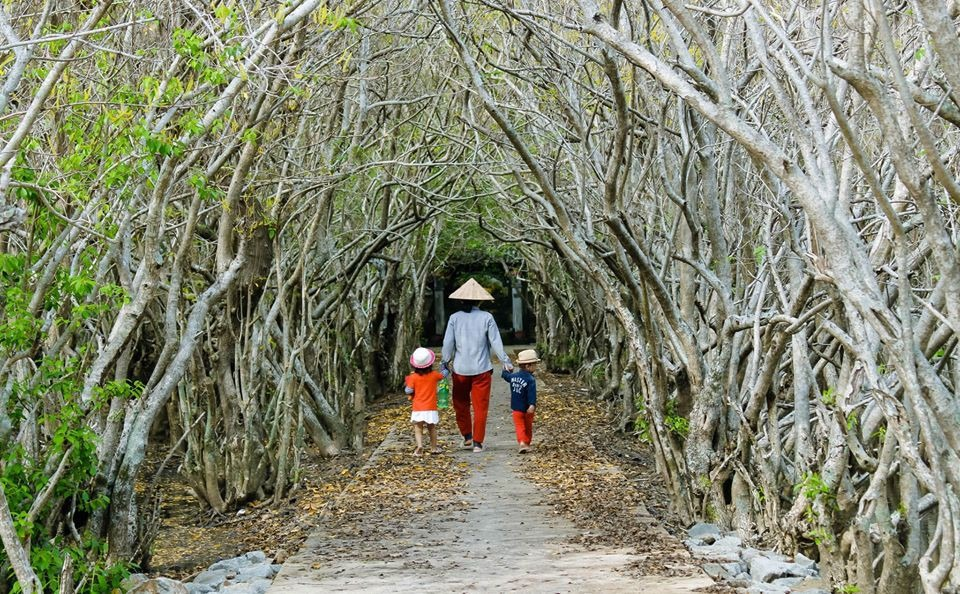 Bạn có thể đến đây bằng cách chạy dọc theo đường quốc lộ 49 hướng về biển Thuận An, rẽ trái vào cây cầu Tam Giang để đến được không gian mang màu sắc hoang sơ đầy khác lạ này. Ảnh: Thu Thủy.