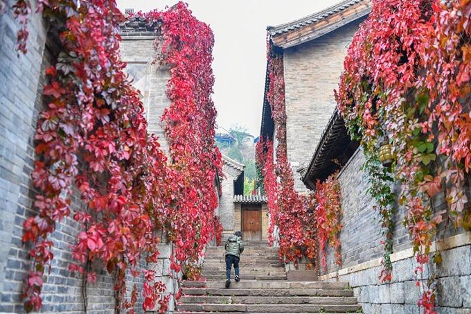 Thị trấn nằm tại Gubeikou, quận Miyun, ngoại thành Bắc Kinh, nổi tiếng với những căn nhà cổ, con đường lát đá rêu phong cùng những dàn cây dây leo bám dọc theo mảng tường. Đây là địa điểm chụp ảnh yêu thích của những người thích phong cách cổ trang với sân vườn truyền thống.