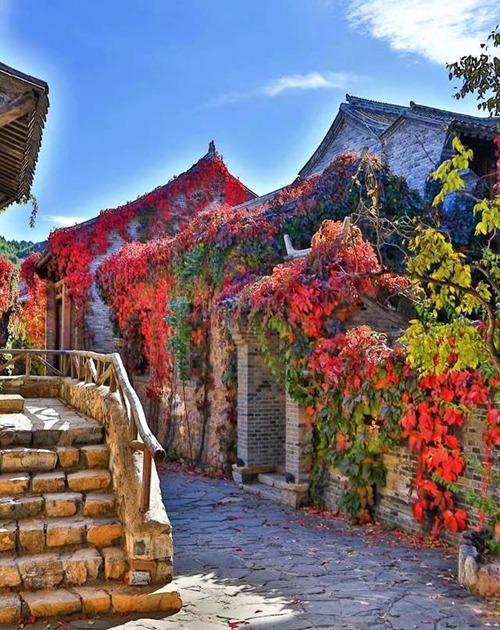 Bạn có thể dành cả ngày để lang thang trong các con ngõ nhỏ đẹp như tranh, hoặc ghé thăm một số địa danh trong thị trấn như phòng trưng bày Sima, nhà nhuộm Yongshun, nhà hát Miyun, học viện Yinghua và quán Zhenyuan.