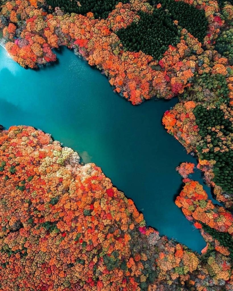 Đi cáp treo mất khoảng 3 phút và chi phí khoảng 6,7 USD, bạn có thể chiêm ngưỡng núi Nantai, hồ Chuzenji và thác Kegon. Đây cũng là nơi tuyệt nhất khiến du khách tận hưởng vẻ đẹp tráng lệ của thiên nhiên. Vào mùa hè, rừng cây được bao phủ bởi sắc xanh tươi tốt. Vào mùa đông, phong cảnh núi rừng phủ đầy tuyết trắng. Ảnh: Visitjapanau.