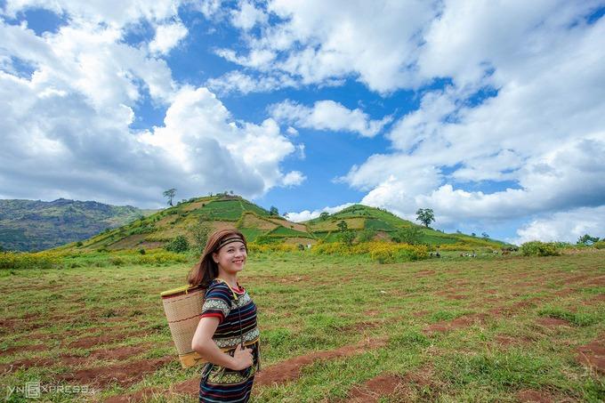 """Trong mùa hoa, điểm đến này thu hút khách tham quan và các nhiếp ảnh gia tới chụp hình. Chị Lữ Hồng (ảnh) nói: """"Tôi không khỏi choáng ngợp khi ngắm màu vàng đặc trưng hoa dã quỳ xung quanh sườn núi lửa Chư Đăng Ya""""."""