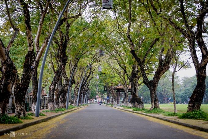 Một sớm yên bình trong tiết trời thu trên đường 23/8, nơi dẫn lối du khách vào tham quan Đại Nội.
