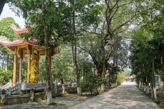 Không gian chùa rộng rãi, rợp bóng cây xanh. Năm 1997, chùa được xếp hạng di tích lịch sử cấp quốc gia.
