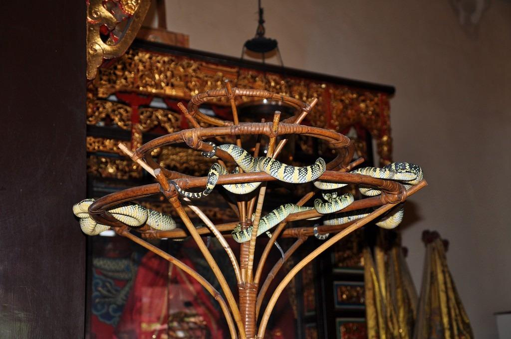 Ngôi đền có những bức tượng được chạm khắc tinh xảo. Điểm ấn tượng nhất là chiếc chuông lớn tại sảnh chính, được mang về từ Trung Quốc vào năm 1886 trong triều đại Mãn Châu. Ở phía sau của ngôi đền, nếu để ý kỹ, bạn sẽ thấy những con rắn đang cuộn quanh cành cây. Việc thống kê số lượng rắn hiện sống trong khuôn viên chùa là điều khó khăn. Ảnh: Justgola.
