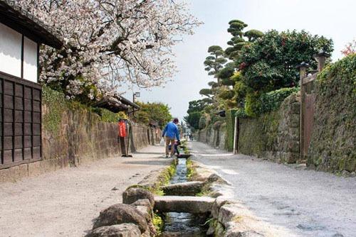 Du khách có thể dễ dàng di chuyển đến các điểm du lịch ở Shimaraba bằng xe bus. Ảnh: Japan travel.