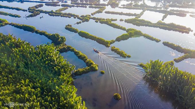 Do địa hình ngập nước, phương tiện chính để di chuyển tại đây là các loại ghe, thuyền. Tuy chưa được khai thác du lịch, rừng dừa nước Tịnh Khê khá nổi tiếng ở Quảng Ngãi bởi sự hoang sơ và thơ mộng. Để vào rừng dừa, du khách đi theo đường biển Mỹ Khê và hỏi thăm người dân. Bạn có thể thuê người chèo thuyền vào giữa rừng để chụp hình và tận hưởng trọn vẹn bầu không khí trong lành nơi đây.