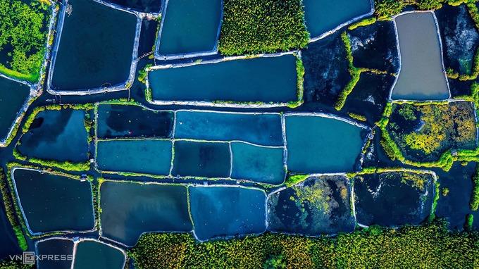 Rừng dừa nước Tịnh Khê hiện có diện tích trên 9 hecta, bị thu hẹp nhiều so với thời kháng chiến do người dân đào ao nuôi trồng thủy sản. Diện tích rừng dừa nước còn lại đang được chính quyền địa phương quy hoạch, khai thác du lịch sinh thái.