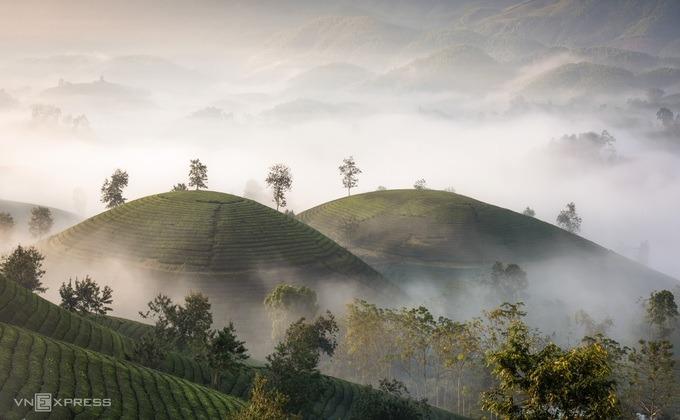 Đến với Phú Thọ, du khách có thể chọn tour khám phá đồi chè Long Cốc - vườn quốc gia Xuân Sơn, chọn hình thức lưu trú homestay để trải nghiệm cuộc sống văn hóa cùng người dân Mường bản địa.
